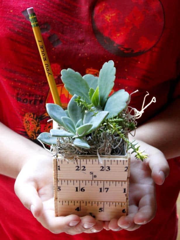 a plant holder made out of wooden ruler pieces with a plant inside