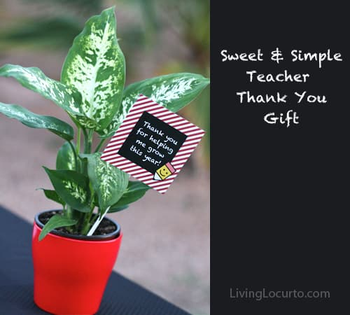 a red plant pot with a green plant and a little sign on a stick