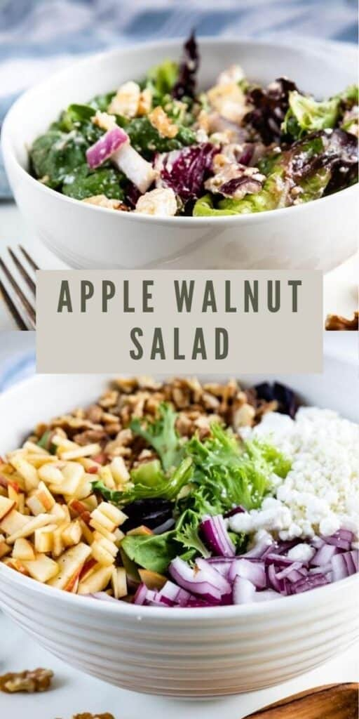 Collage of apple walnut salad images with recipe title in middle of photos