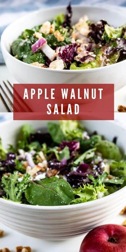 Apple walnut salad collage with recipe title in middle of two photos